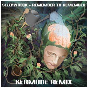 Sleepwreck x Kermode